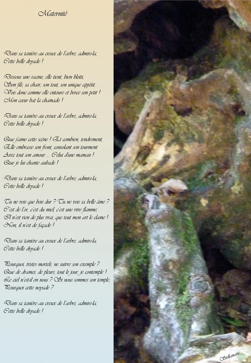 Maternité / / Dans sa tanière au creux de l'arbre, admire-la, / Cette belle dryade ! / / Dessous une racine, elle tient, bien blotti, / Son fils, sa chair, son tout, son unique appétit. / Vois donc comme elle entoure et berce son petit ! / Mon cœur bat la chamade ! / / Dans sa tanière au creux de l'arbre, admire-la, / Cette belle dryade ! / / Que j'aime cette scène ! Et combien, tendrement, / Elle embrasse son front, consolant son tourment / Avec tout son amour … Celui d'une maman ! / Que je lui chante aubade ! / / Dans sa tanière au creux de l'arbre, admire-la, / Cette belle dryade ! / / Tu ne vois que bois dur ? Tu ne vois sa belle âme ? / C'est de l'or, c'est du miel, c'est une vive flamme, / Il n'est rien de plus vrai, que tout mon art le clame ! / Non, il n'est de façade ! / / Dans sa tanière au creux de l'arbre, admire-la, / Cette belle dryade ! / / Pourquoi, tristes mortels, ne suivre son exemple ? / Que de drames, de pleurs, tout le jour, je contemple ! / Le ciel n'est-il en nous ? Si nous sommes son temple, / Pourquoi cette noyade ? / / Dans sa tanière au creux de l'arbre, admire-la, / Cette belle dryade ! / / Stellamaris
