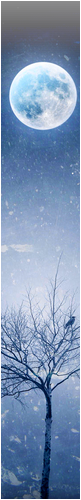 [Tutoriel] Le HTML Lune-235cb12