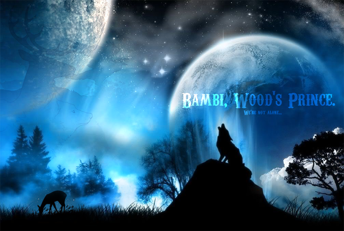 Forum Bambi ~ Wood's Prince ~ Rpg Index du Forum