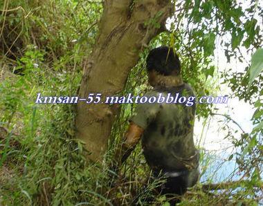 finir sa vie sous un arbre 1192678910-145ed7b