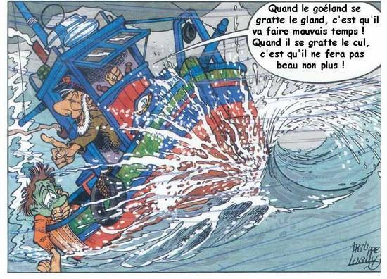 Proverbes bretons chez dom for Koi qui se gratte