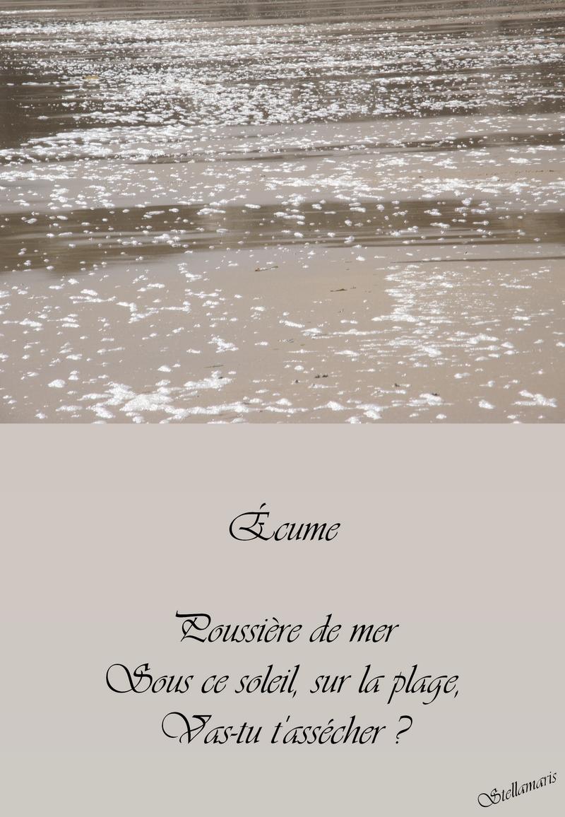 Écume / / Poussière de mer / Sous ce soleil, sur la plage, / Vas-tu t'assécher ? / / Stellamaris